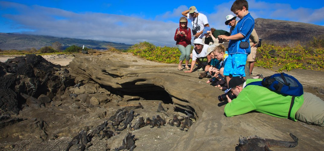 Adults, kids, and iguanas on the Galápagos Islands. Credit: Chris Gamel