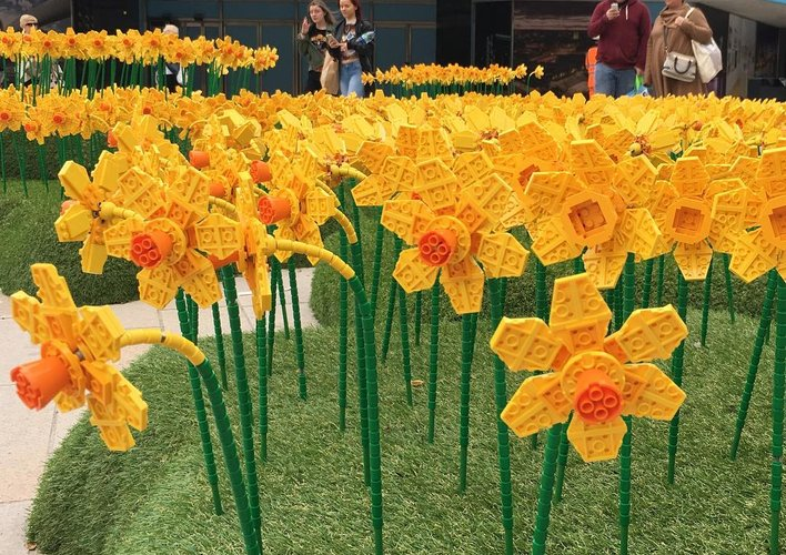 Caption: Lego Daffodils Are Blooming in Britain