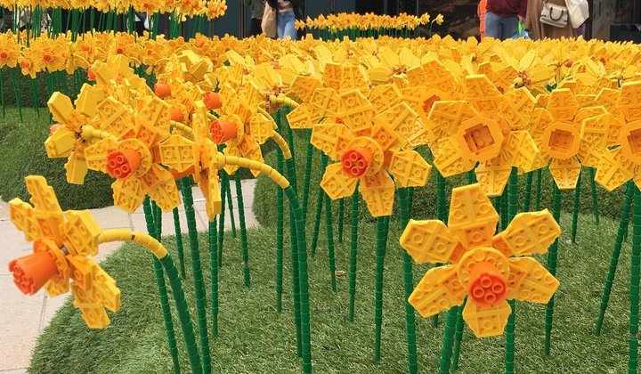 Lego Daffodils Are Blooming in Britain