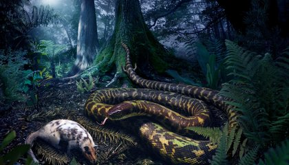 The Mother of All Snakes Looked Surprisingly Modern
