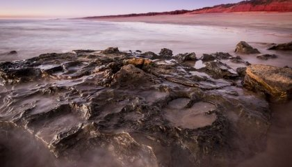Largest-Known Dinosaur Footprint Discovered in Western Australia