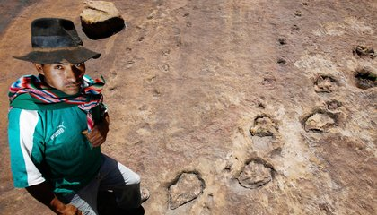Where Dinosaurs Walked: Eight of the Best Places to See Prehistoric Footprints