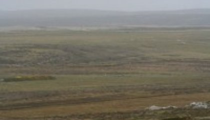 The Falklands Wolf: A Darwin Mystery Solved
