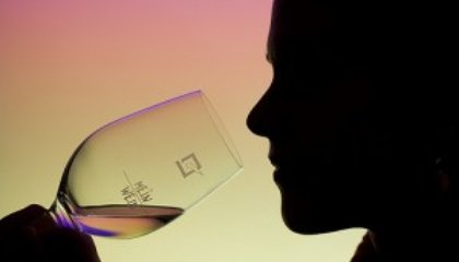Tipsy Gene Protects Against Alcoholism