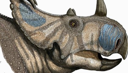 Spinops: The Long-Lost Dinosaur