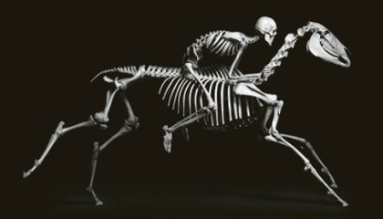 Evolution, A Book That Turns Science Into Art