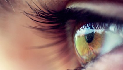Are Your Eyes Also a Window to Your Brain?
