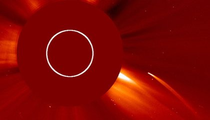 A Comet's Death Caught on Camera