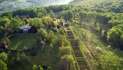 """Paradox of Liberty"" Tells the Other Side of Jefferson's Monticello"