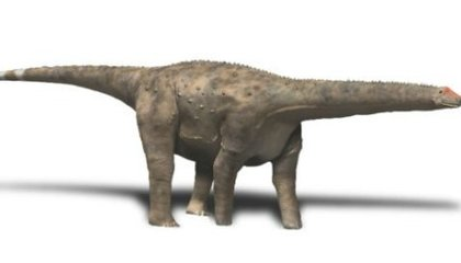 Who Was the First to Discover Dinosaur Eggs?