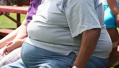 Is There More to Obesity Than Too Much Food?