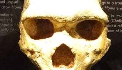 Where Are Greece's Missing Hominids?