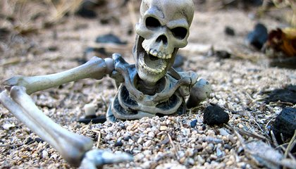 Sandy Unearths Skeleton on New Haven Green