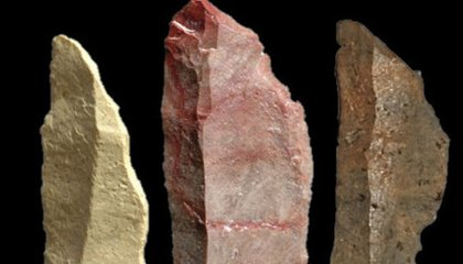 Early Bow and Arrows Offer Insight Into Origins of Human Intellect