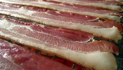 In Bacon Therapy, the Meat Isn't for You: It's for the Bugs Eating Your Skin