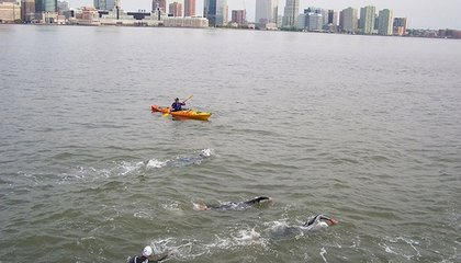 Antibiotic-Resistant Bacteria Live in the Hudson River