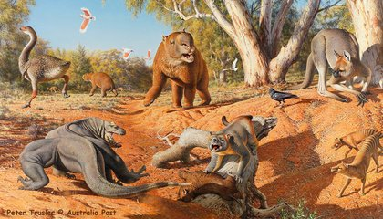 Changing Climate, Not Humans, Killed Australia's Massive Mammals