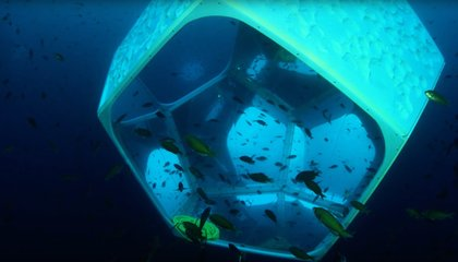 Want to See Installation Artist Doug Aitken's Latest Work? Grab Your Scuba Gear