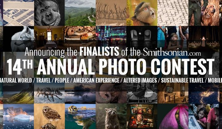 Announcing the Finalists of the 14th Annual Smithsonian.com Photo Contest