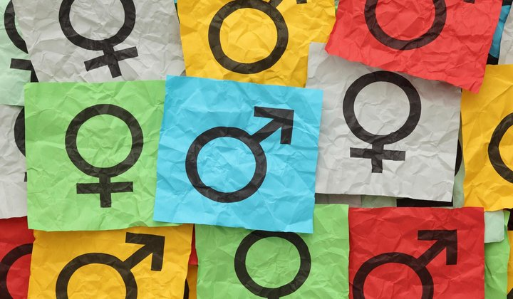 "Gender-Neutral Pronoun ""They"" Adopted by AP"