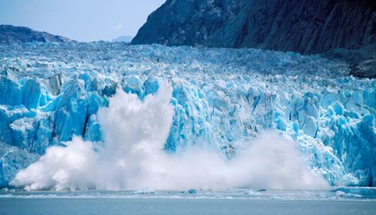 The Loud Noise of Melting Glaciers May Actually Be Good for Animals
