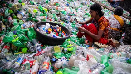 Could Plastic-Gobbling Bacteria Save the Environment?