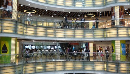 Chinese Malls Are Filled With Sad Animals