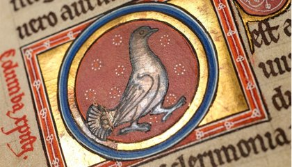 Hi-Res Photography Reveals New Details of the Centuries Old Aberdeen Bestiary