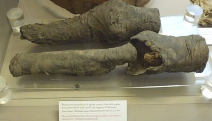 Researchers Identify Queen Nefertari's Mummified Knees