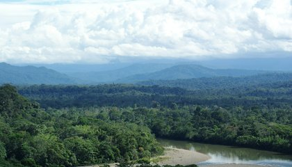 New Agreement Will Help Protect the Amazon Basin