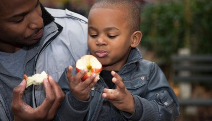 American Kids Are Obsessed With Apples