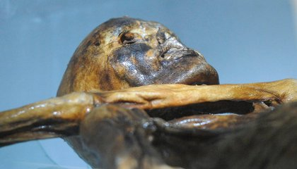"The 61 Tattoos of Ötzi, the 5,300-Year-Old ""Iceman"""