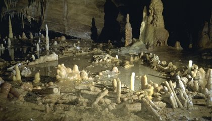 Neanderthals Built Mysterious Stalagmite Semicircles