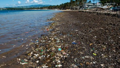 The Ocean's Great Garbage Patches Might Have Exit Doors