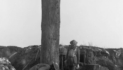 These Fake Trees Were Used as Spy Posts on the Front Lines of World War I