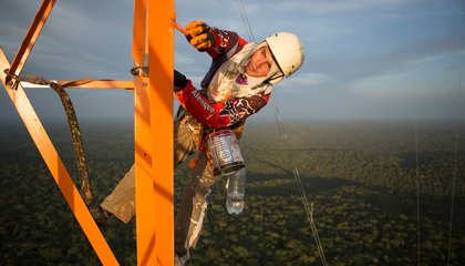 This New Tower Gives Scientists a Bird's Eye View of the Amazon