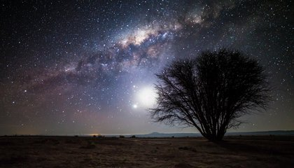 An Astronomer's Paradise, Chile May Be the Best Place on Earth to Enjoy a Starry Sky