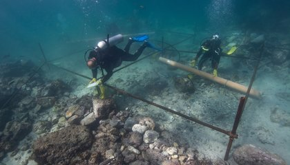 Found: 500-Year-Old Portuguese Shipwreck From Famed Explorer's Fleet