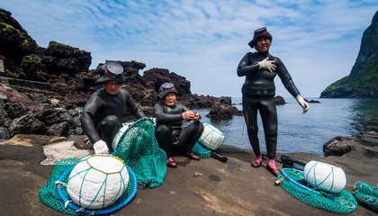South Korea's 'Women of the Sea' Have Free Dived For Abalone Since the 17th Century