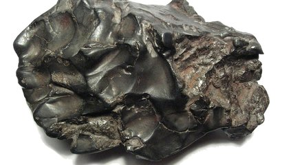 For the Only Person Ever Hit by a Meteorite, the Real Trouble Began Later
