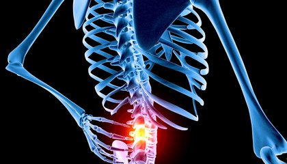 The Cure for Lower Back Pain? Mindfulness and Therapy