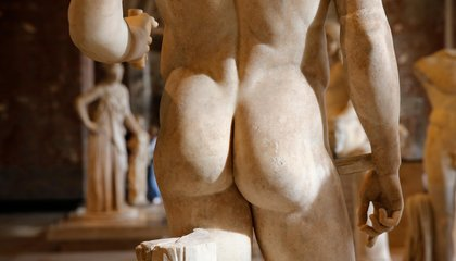 Science Is Still Unclear About the Evolutionary Origin of the Anus