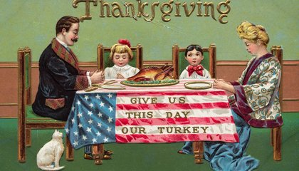 Your Thanksgiving Turkey Is a Quintessentially American Bird: An Immigrant