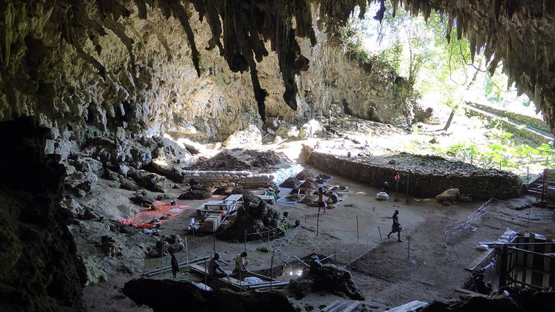 Excavations at Liang Bua cave are still ongoing and could yield further clues to the Flores Hobbits' origins.