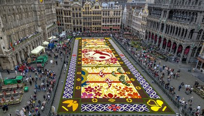 Don't Miss These Dazzling, Iconic Flower Festivals