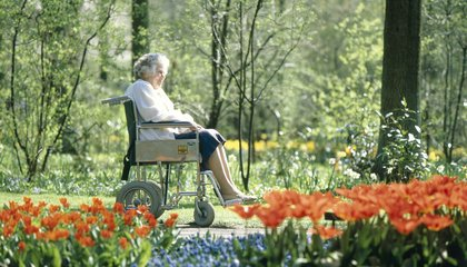 Gardens May Be Therapeutic For Dementia Patients