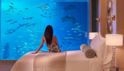 Sleep With the Fishes: The Best Places to Spend a Night Underwater