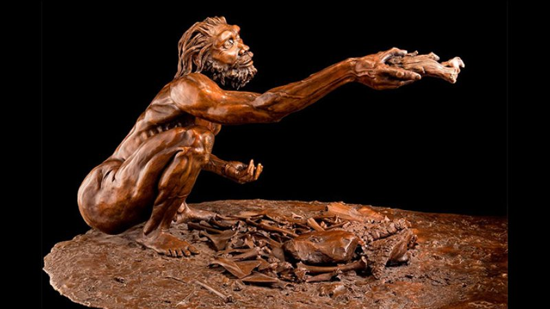 <em>Homo heidelbergensis</em> lived in a social group that controlled fire, built shelters, hunted animals and shared food with each other.