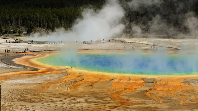 Grand Prismatic Spring from high viewpoint. Yellowstone National Park, Wyoming, United States of America.