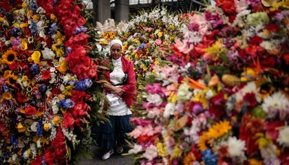 A Parade of Bright Flowers in a City With a Dark Past